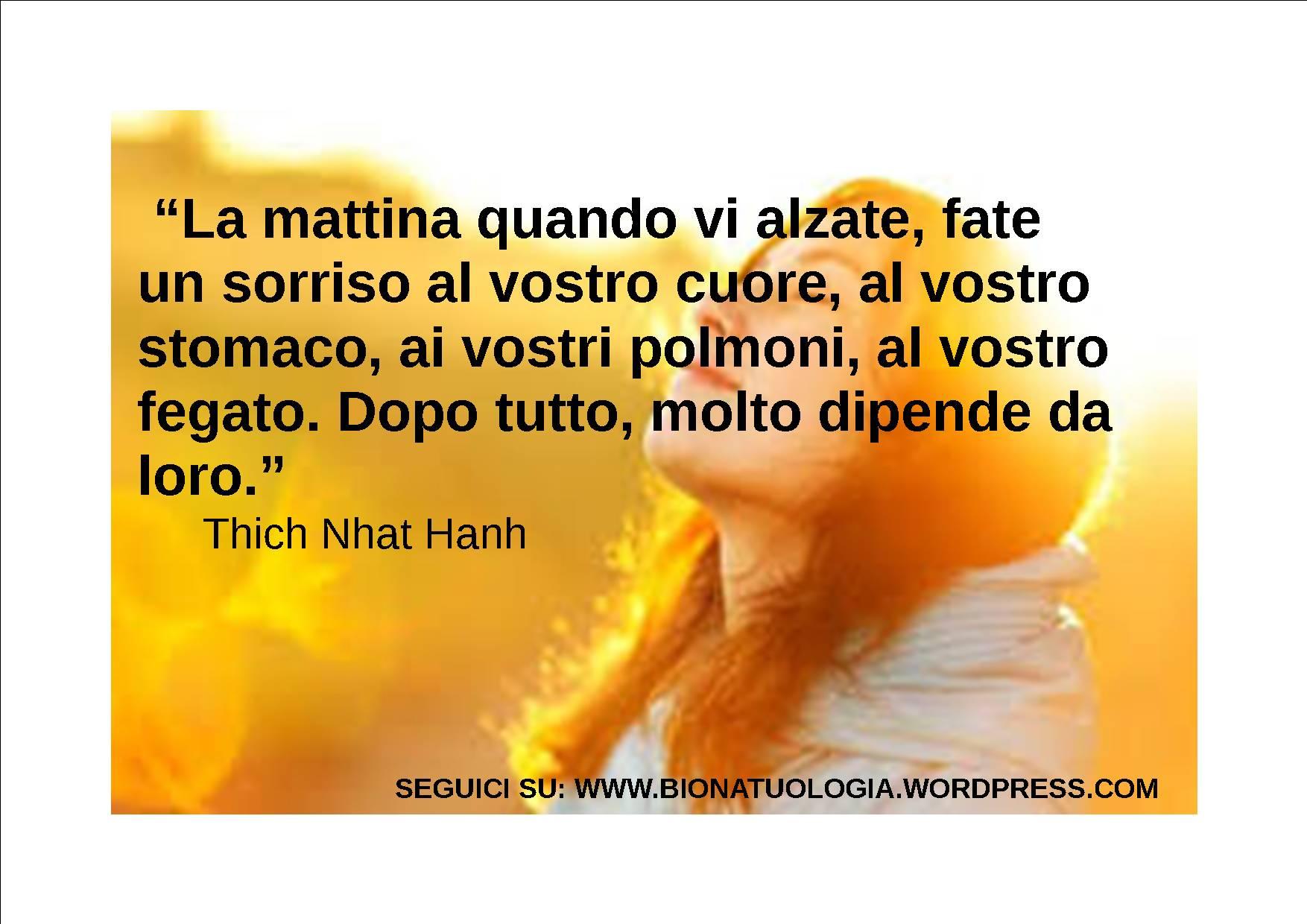 Ben noto FRASI Thich Nhat Hanh | BIONATUROLOGIA© RI52