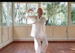 Taiji video corso base gratuito